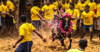 One killed, 30 injured in Jallikattu at TN's Alanganallur