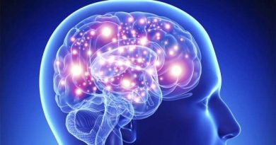 The human brain can detect Earth's magnetic field